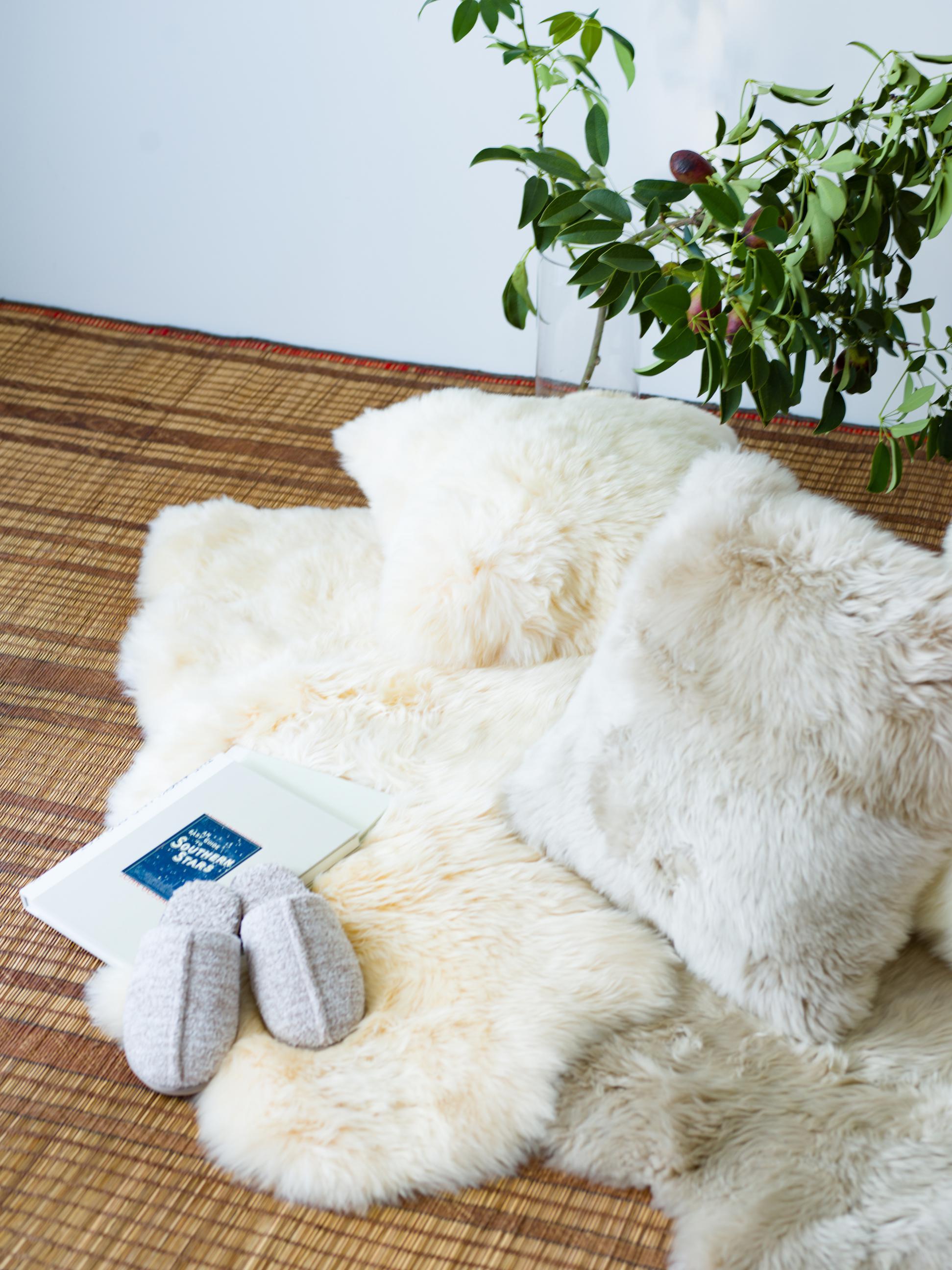 39 rug ¥16,000 cushion ¥11,000