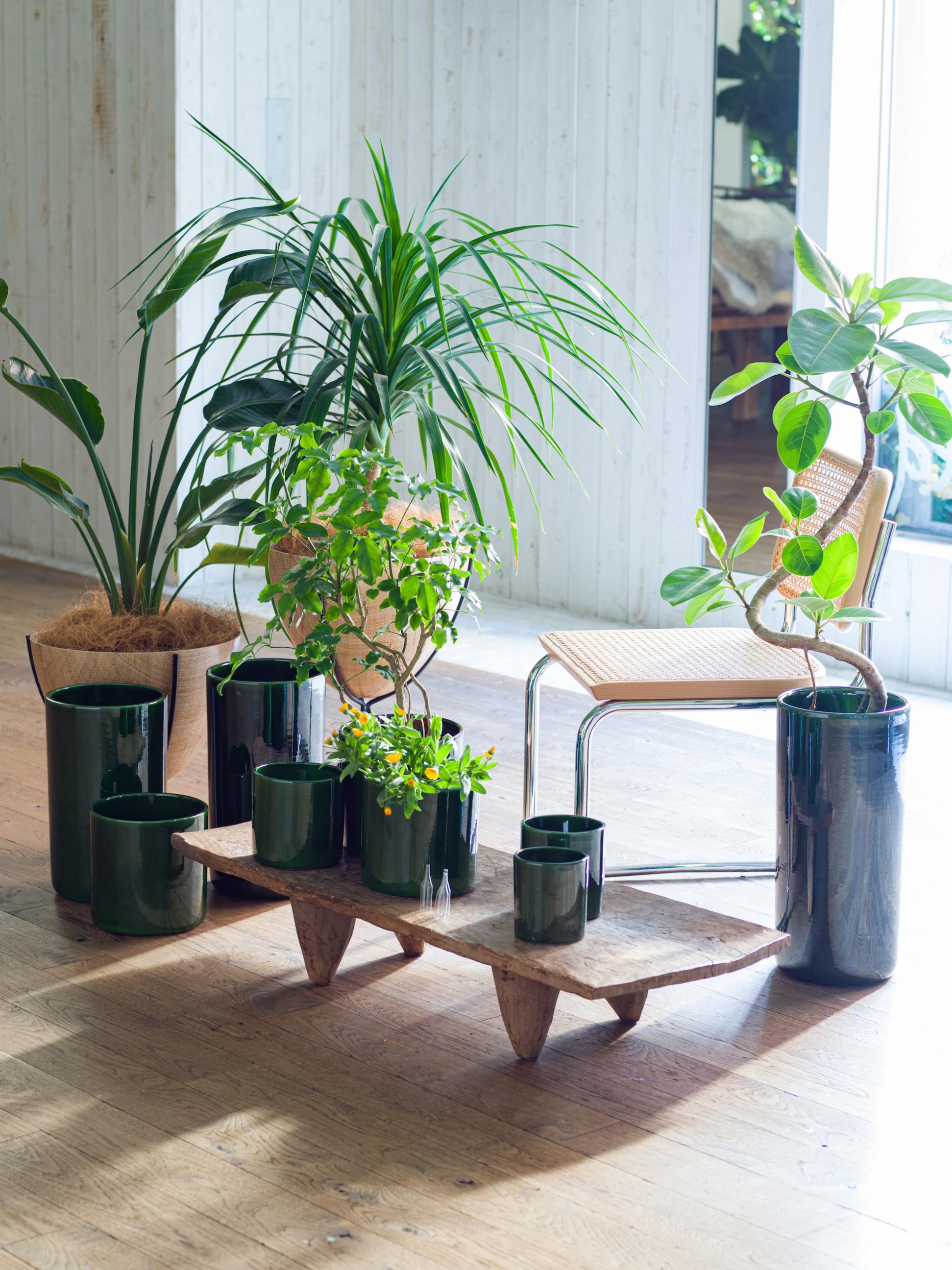 37 vase  ¥2,750~¥28,600