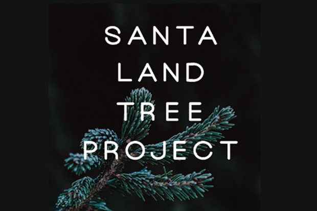 SANTALAND TREE PROJECT X'mas Tree Market -12.3(sun)